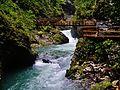 Bled Vintgar-Klamm 40.JPG