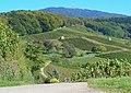 Blick zum Blauen - panoramio.jpg