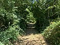 Bois Cormorey St Cyr Menthon 5.jpg