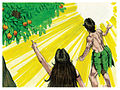 Book of Genesis Chapter 3-7 (Bible Illustrations by Sweet Media).jpg