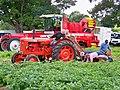 Border Union Agricultural Show 2009 - Potato Picker Demonstration - geograph.org.uk - 1412847.jpg