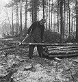 Bosbewerking, arbeiders, boomstammen, gereedschappen, Bestanddeelnr 253-5993.jpg