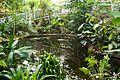 Botanical Garden Teplice 9.JPG