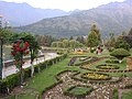 Botanical garden kashmir.jpg