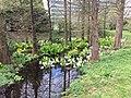Botanische tuinen Utrecht 18.jpg