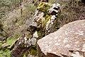 Boulders, Grampians, Victoria Australia (4843033953).jpg