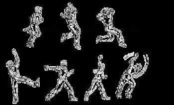 portailcricketimage du jour � wikip233dia