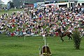 Bramham Horse Trials - geograph.org.uk - 558930.jpg