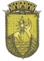 Brasão de São Gabriel da Cachoeira AM.png