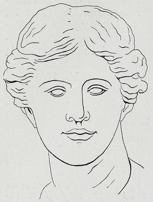 Facial symmetry - Image: Braus 1921 395
