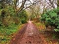 Braywick Park (32095036964).jpg