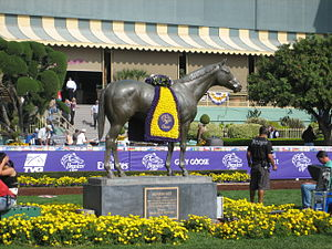 Breeders' Cup - The saddling paddock, decorated for the Breeders' Cup