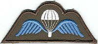 les paras commando belge aujourd'hui 200px-Brevet_Para_be
