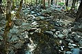 Bridalveil Creek (Yosemite Valley, Sierra Nevada Mountains, California, USA) 1 (19848230760).jpg