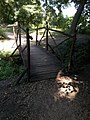 Bridge in Jubileumi Park forest, 2017 Dabas.jpg