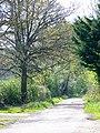 Bridleway, Clivey Farm - geograph.org.uk - 1284707.jpg