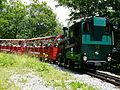 Brienzer Rothornbahn bei Gäldried 2013.jpg