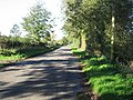 Broadmoor Lane To Carbrooke - geograph.org.uk - 293280.jpg