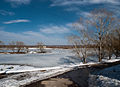 Bronnitsy lake Mar 2010 16.jpg