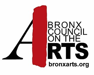 Bronx Council on the Arts Art based culture agency