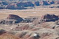 Brown and Tan Painted Hills.jpg
