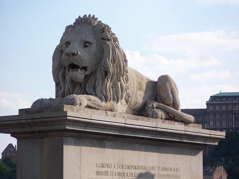 http://upload.wikimedia.org/wikipedia/commons/thumb/5/52/Budapest_Chain_bridge_lion.jpg/800px-Budapest_Chain_bridge_lion.jpg