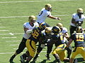 Buffaloes on offense at Colorado at Cal 2010-09-11 16.JPG