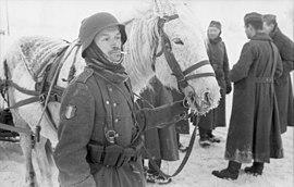 Bundesarchiv Bild 101I-214-0328-28, Russland, Soldaten der franz%C3%B6sischen Legion