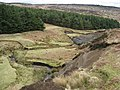 Burbage Brook View - geograph.org.uk - 750464.jpg