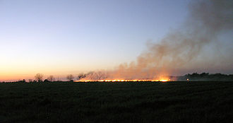 Controlled burning of a field outside of Statesboro, Georgia in preparation for spring planting. BurningOffFieldsInTheEveningInSouthGeorgia.jpg