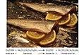 CNX Chem 14 03 FishLemon.jpg