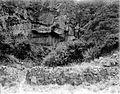 COLLECTIE TROPENMUSEUM Een grot bij de Welirang top met oude Hindoe muren groeiplaats van Coprosma TMnr 10006382.jpg