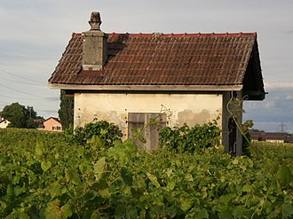 Féchy - Small house in the vineyards outside Féchy