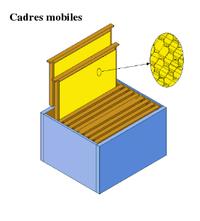 plan de ruche dadant pdf