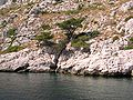 Calanques Marseille Cassis 30.JPG