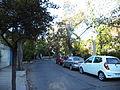 Calle arbolada de la población.JPG
