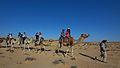 Camel rides near Eilat.jpg