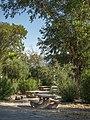 Campsite at Temple Bar (587be618-f58f-45ed-be8e-e19b044b7311).jpg