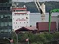 Canfornav freighter Blacky unloading raw sugar at Redpath sugar refinery, 2015 09 09 (5).JPG