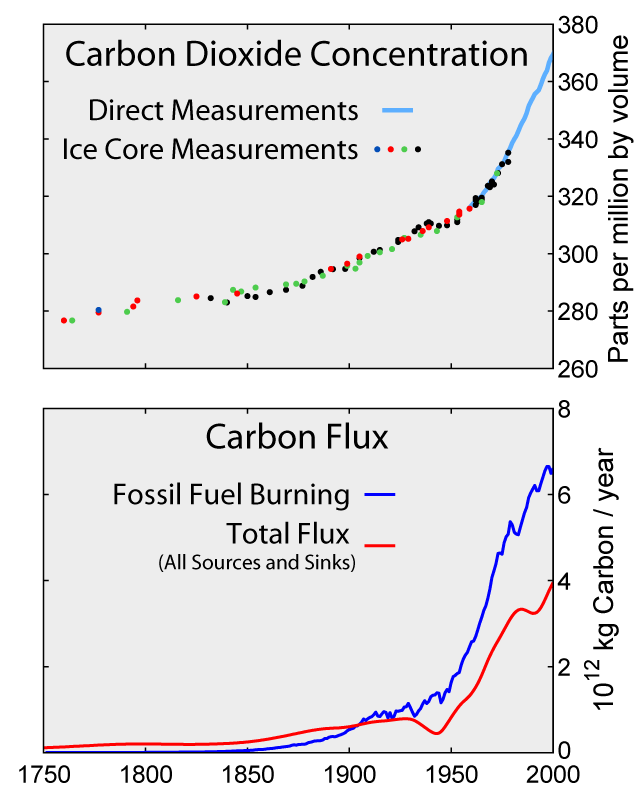 Carbon History and Flux Rev