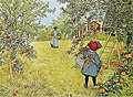 Carl Larsson - Äppelskörden ( ±1904).jpg
