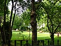 Carlyle Square Gardens - geograph.org.uk - 493841.jpg