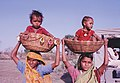 Carrying children in baskets on the head in India.jpg