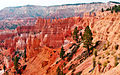 Cathedral of Color, Bryce Canyon, UT 9-09 (22781290176).jpg