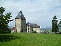 Château de Rumilly-sous-Cornillon.jpg