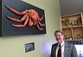 Charles Smith at the Vancouver Aquarium's Learning Centre with a fine specimen of an Alaska King Crab..jpg