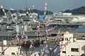 Cherry and anchors 桜と錨 (3369784491).jpg