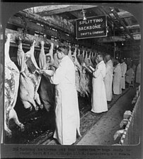 Chicago meat inspectors in early 1906