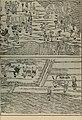 Chong xiu zhen he jin shi zheng lei bei yong cao yao 重修政和经史证类备用本草 (1957.4) (20619234551).jpg