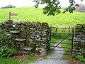 Choose Gate or Stile ... - geograph.org.uk - 1545657.jpg